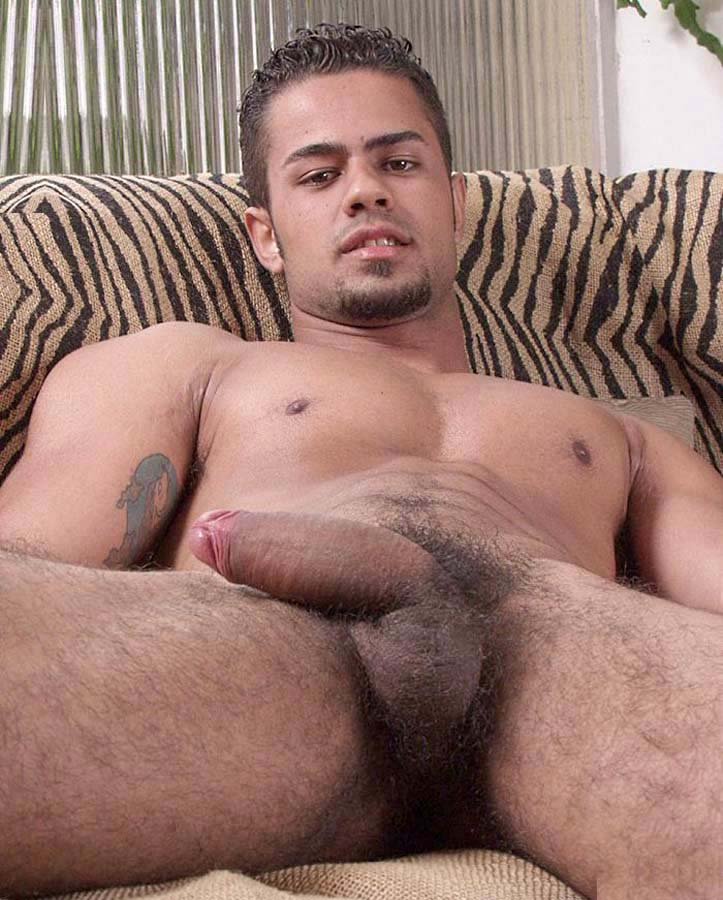 gay hairy picture