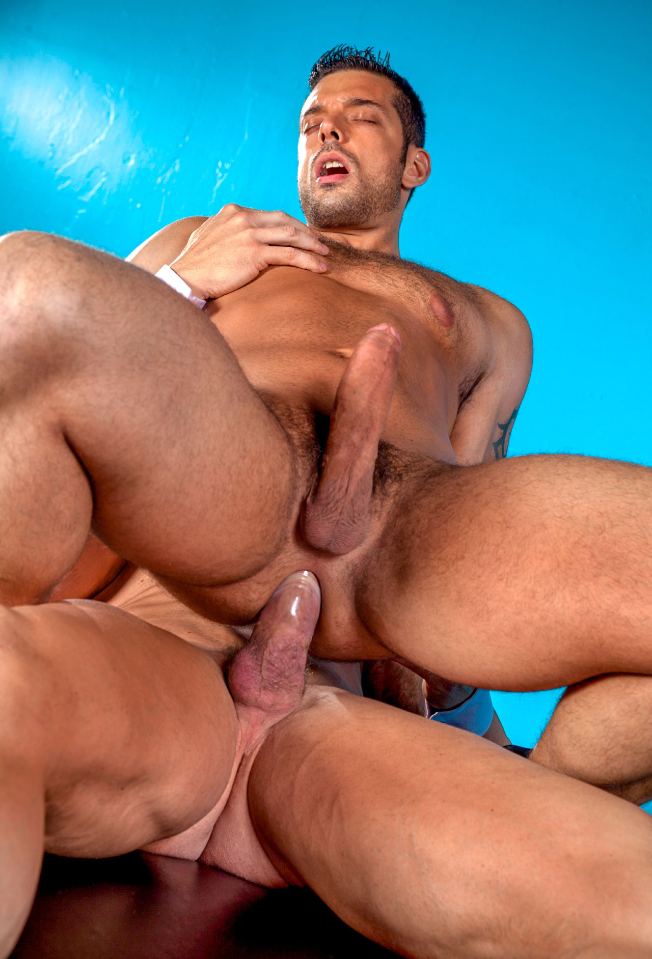 Hd Videos Porno Gay En Acceso Red