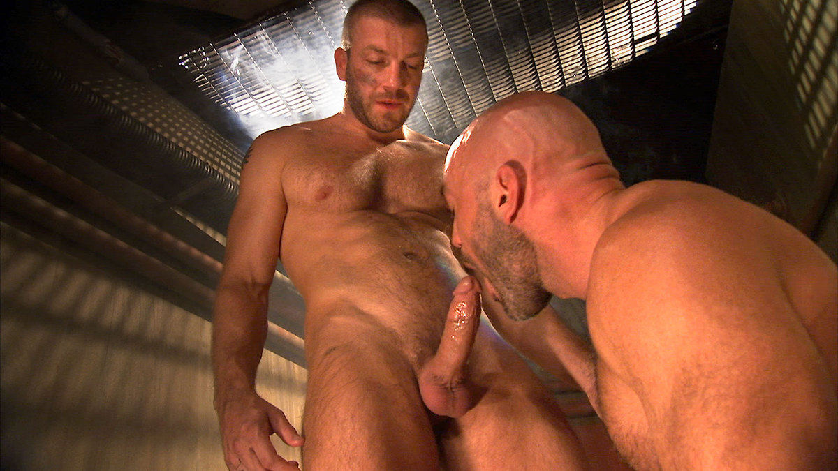 Culturistas Solos Hardcore Pornostars Gay Videos Fotos Clic