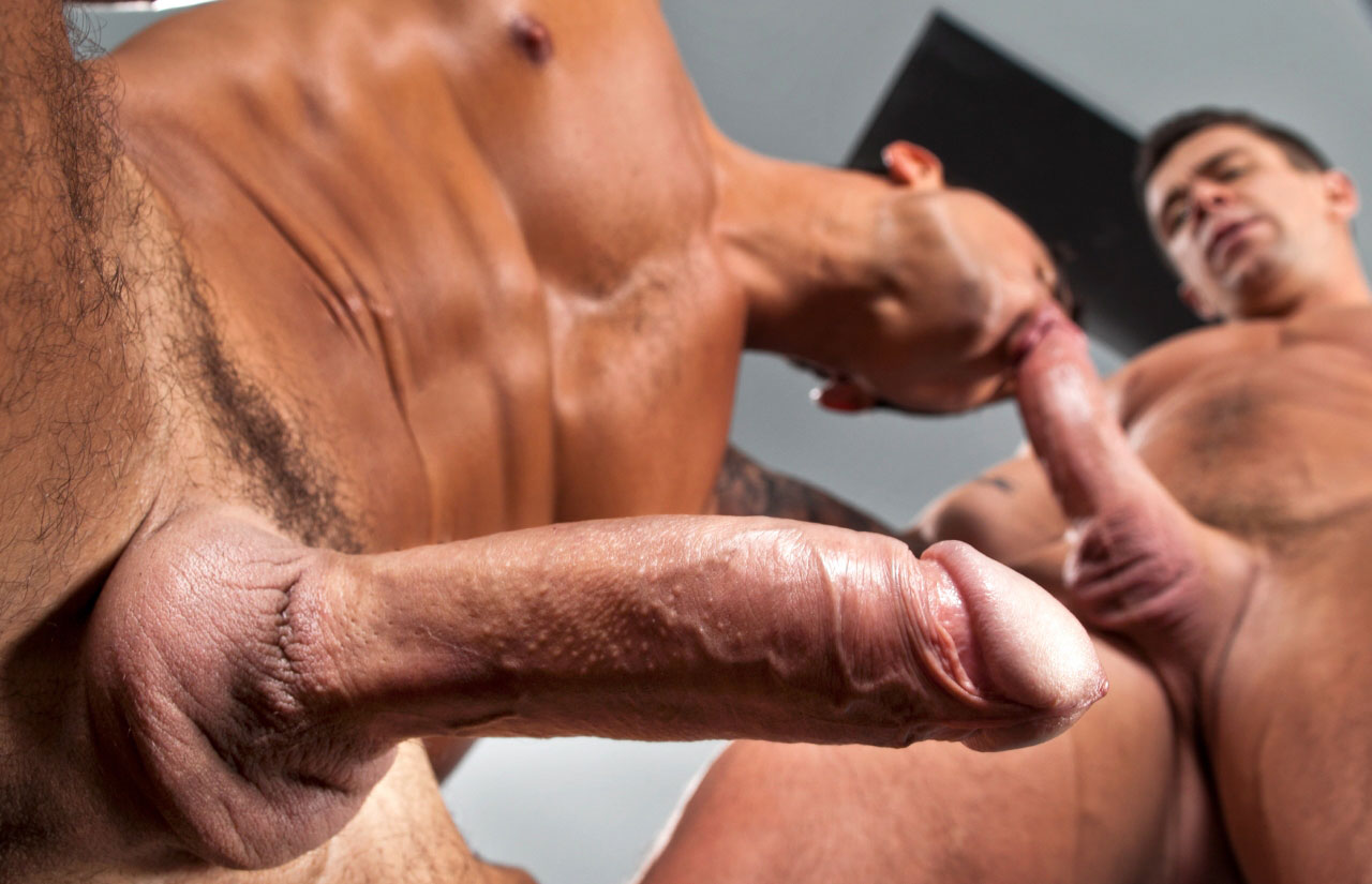 porno gay musculosos video gay tube