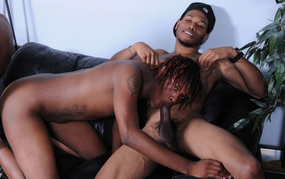 sex tube pollas de negros
