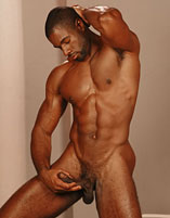 negros pollones gay mexico male escorts