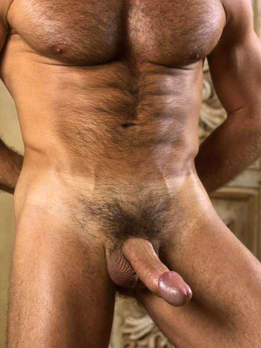 vip male escort porno gay pollones
