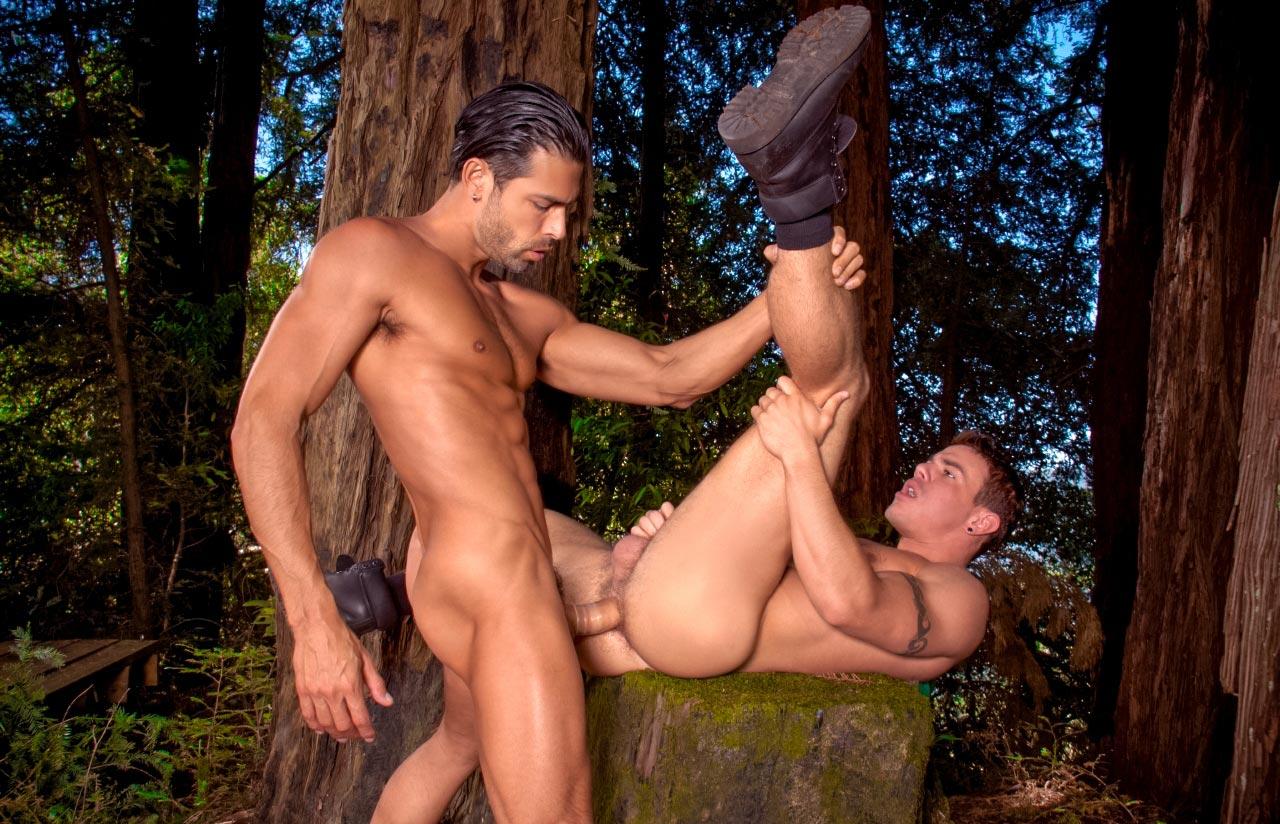 Гей порно онлайн в лесу