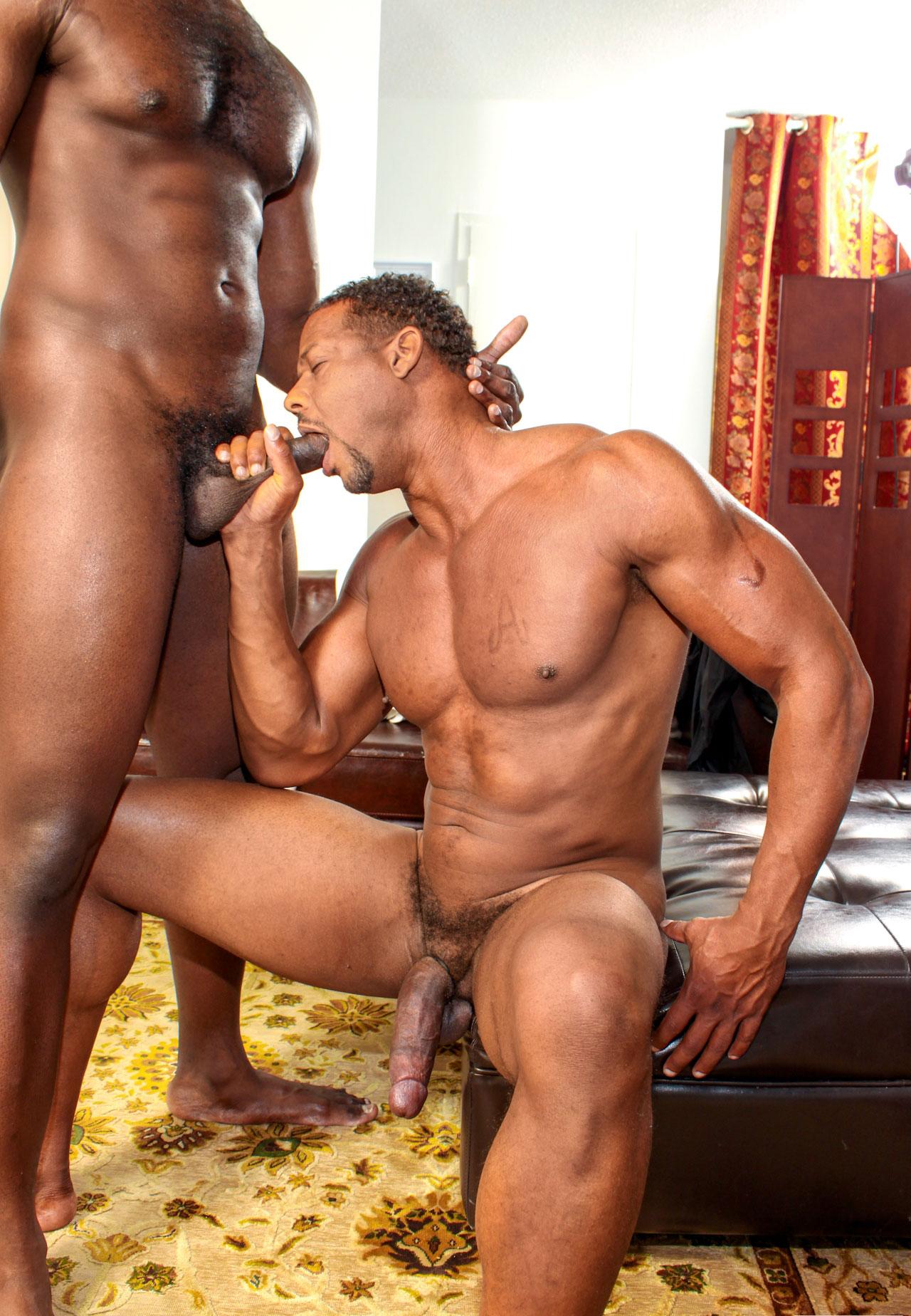 Negros Posando Desnudos Porno Gey porno gay hombres negros sementales calientes galerias fotos